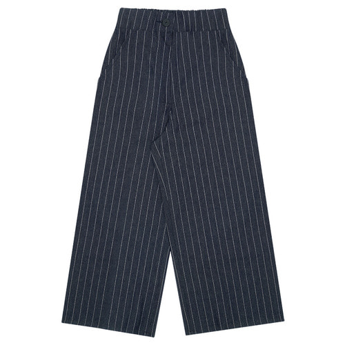MG6S DENIM STRIPE WIDE PANTS (NAVY)